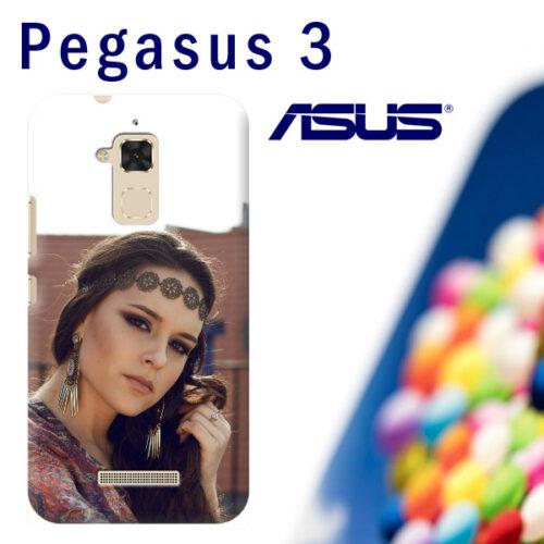 cover personalizzata pegasus 3